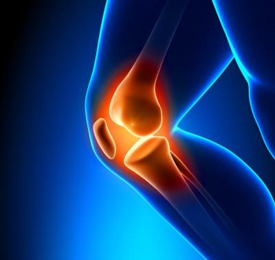 articulacoes-cartilagem-tesla-imagem
