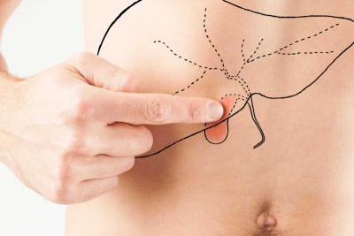 Como avaliar gordura no figado